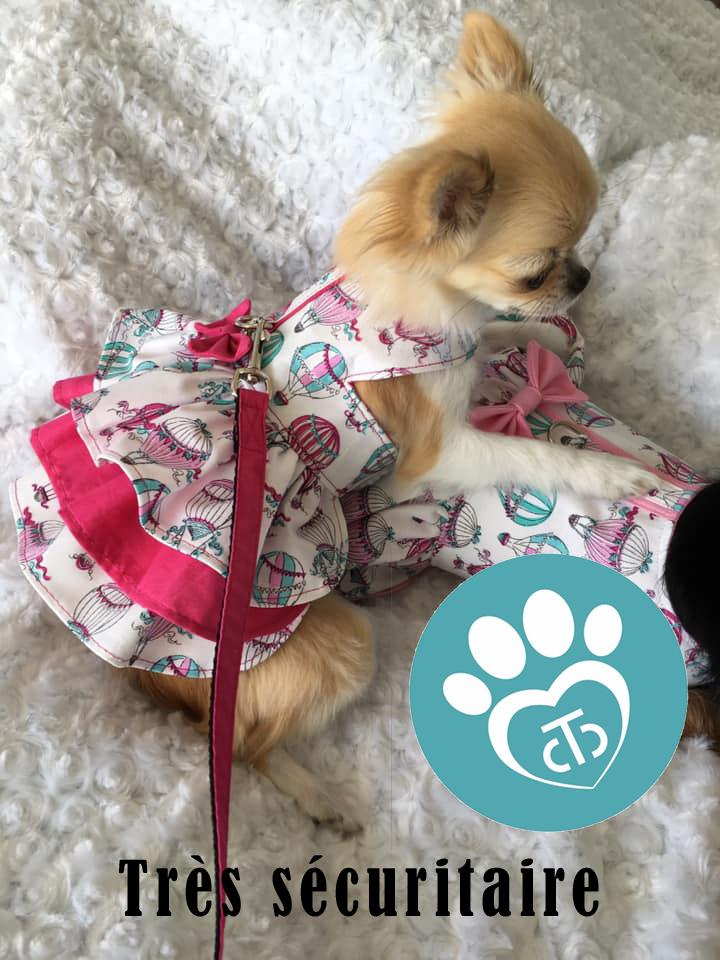 Vêtement chien très chic