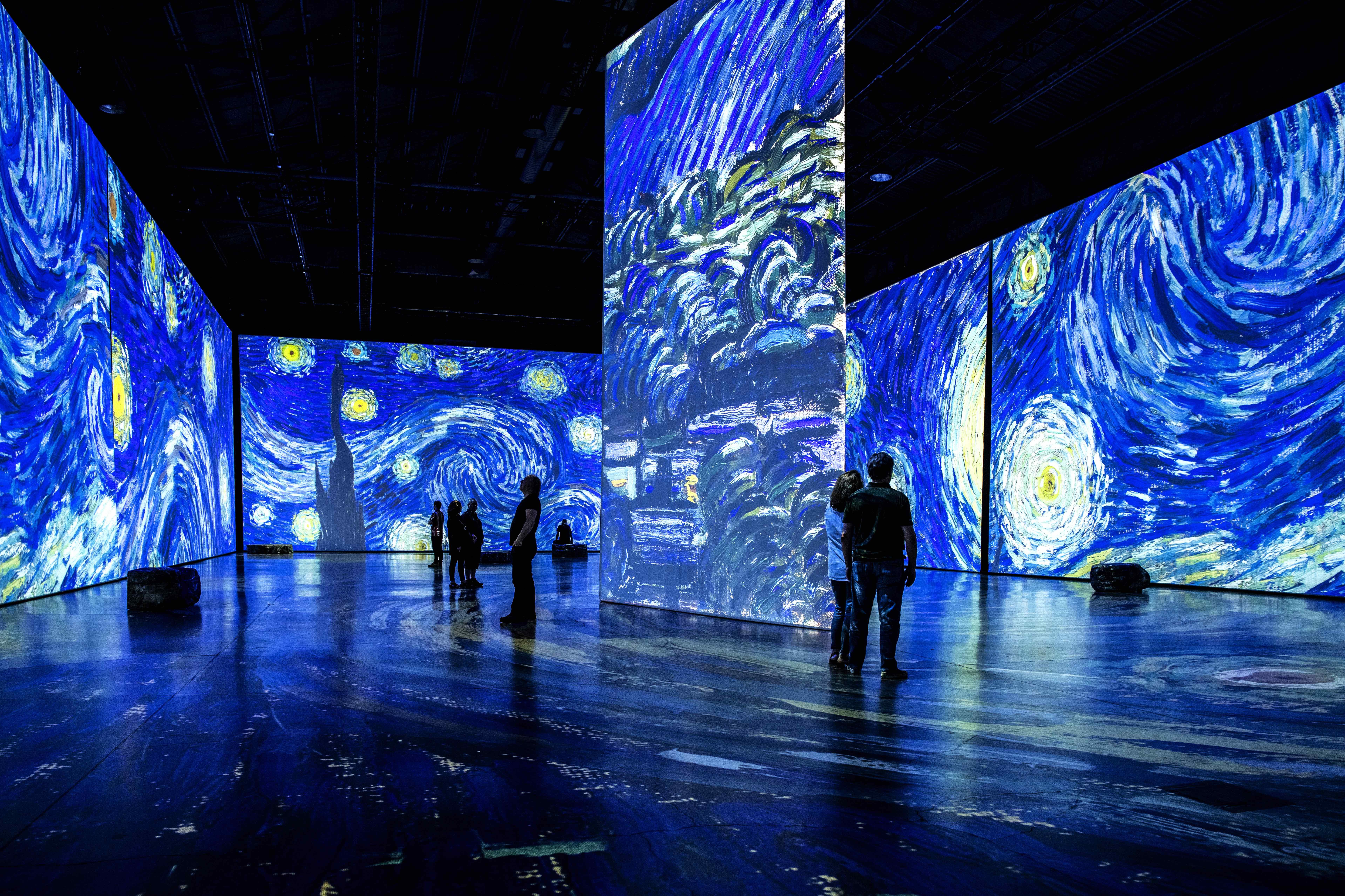 Imagine Van Gogh - The Starry Night