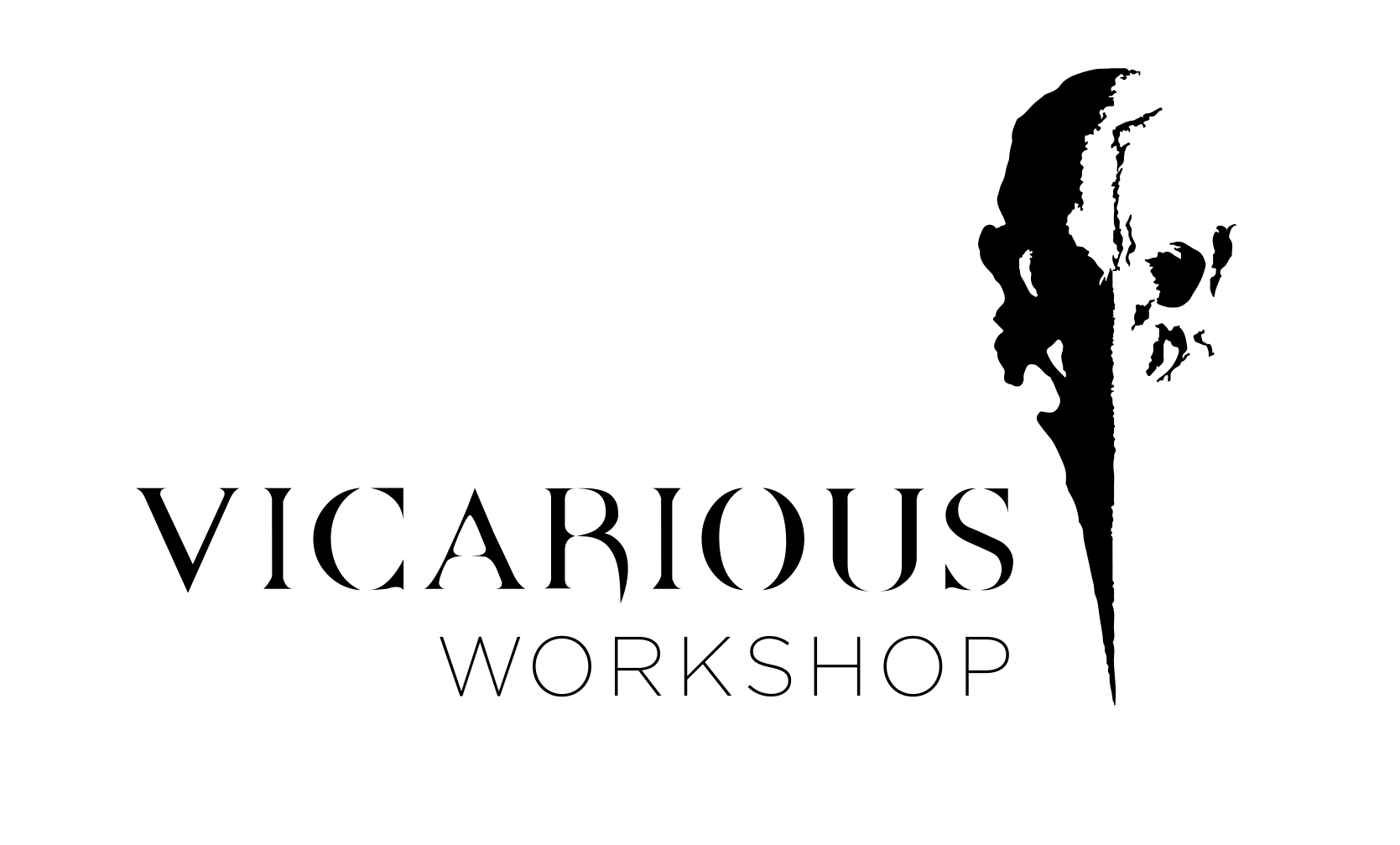 Vicarious Workshop