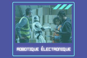 Formation Robotique Electronique